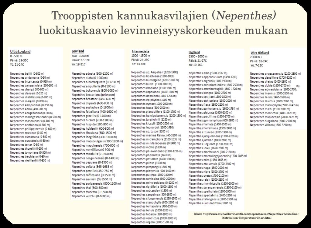 Nepenthes- lajittelukaavio2